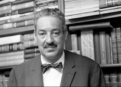TIME Thurgood Marshall The Visionary